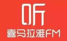 圣矾百万招实操81讲13:月收入5位数的音频电台赚钱项目具体操作方法