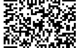 资本运作虚拟资源项目
